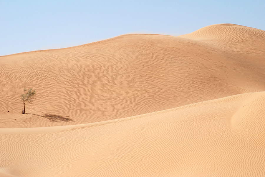 The Empty Quarter, Oman, 2006