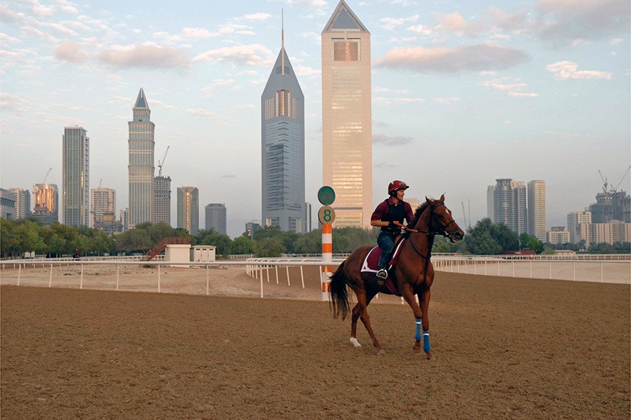 Race course, Dubai, 2007