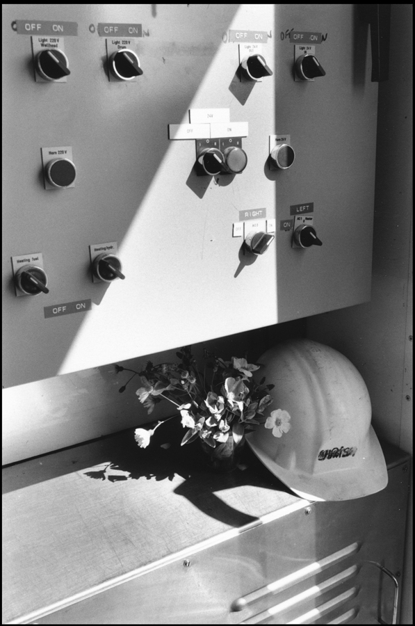 Control box and flowers of the meadow.