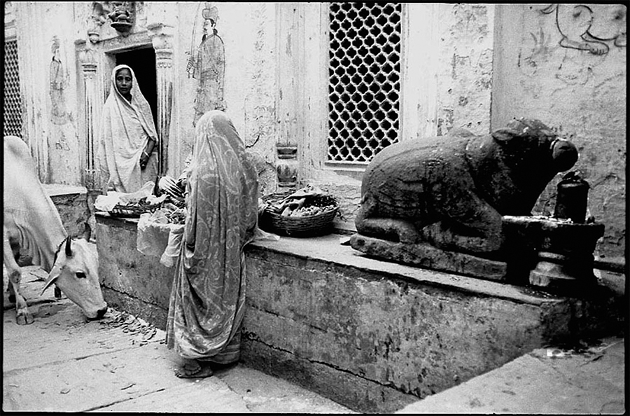 Women and image of Nandi, Benares, 1985