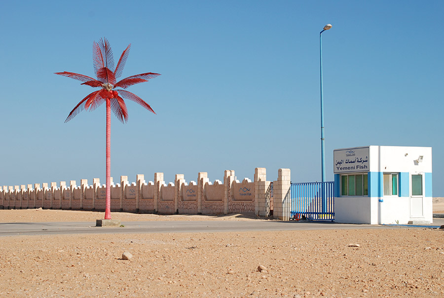 As Shir, Hadramawt, Yemen, 2007
